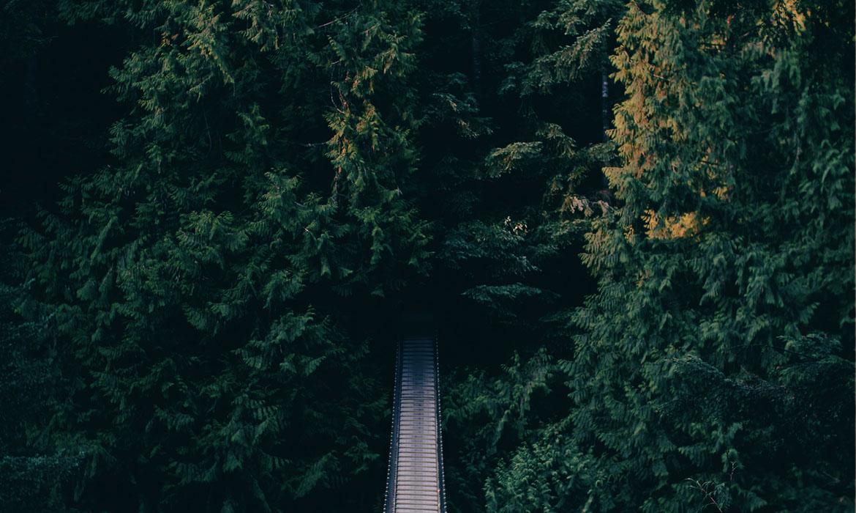 Reisen im Herbst können innerhalb Ihres Budgets sein